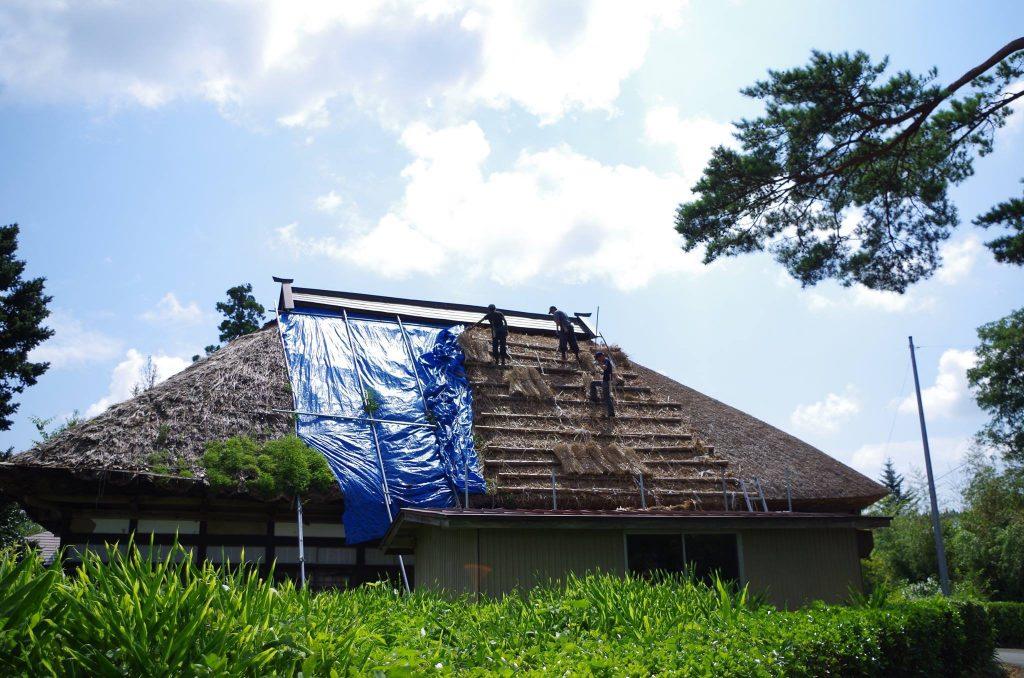 北側の屋根の痛みが特にひどく、ブルーシートで覆って雨漏りを防いでいます。 プロジェクトが走り出した2年前から葺き替えをやっと再開。西側から順に葺き替えを行ってきて、今年やっとブルーシートを半分取ることが出来ました。
